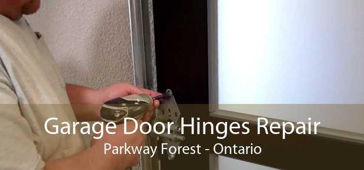 Garage Door Hinges Repair Parkway Forest - Ontario