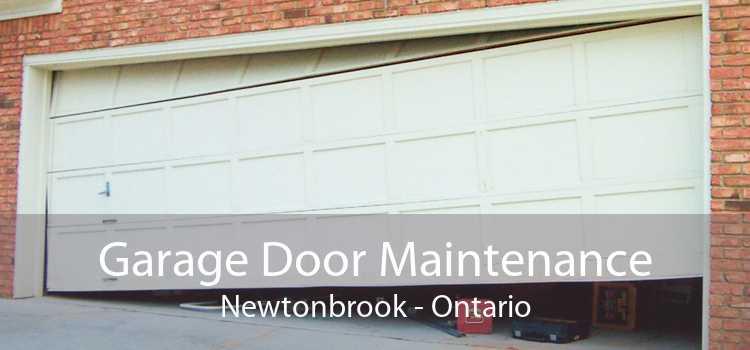 Garage Door Maintenance Newtonbrook - Ontario