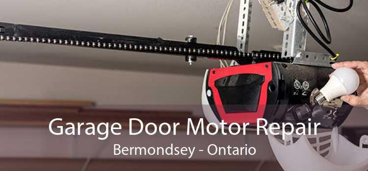 Garage Door Motor Repair Bermondsey - Ontario