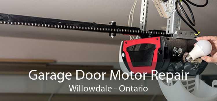 Garage Door Motor Repair Willowdale - Ontario