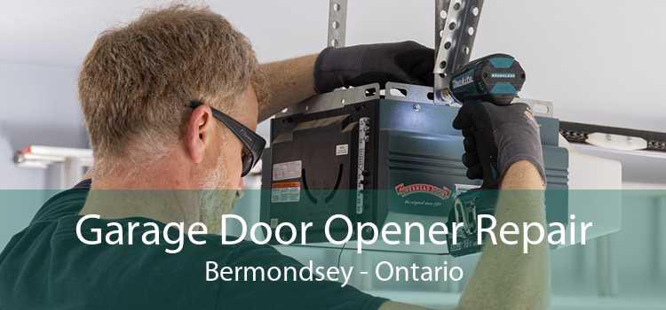 Garage Door Opener Repair Bermondsey - Ontario
