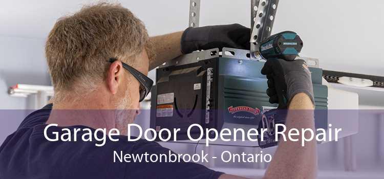 Garage Door Opener Repair Newtonbrook - Ontario